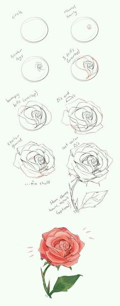 37 Trendy flowers drawing illustration rose - New Tutorial and Ideas Drawing Techniques, Drawing Tips, Drawing Sketches, Painting & Drawing, Drawing Ideas, Drawing Drawing, Sketch Ideas, How To Draw Sketches, How To Sketch