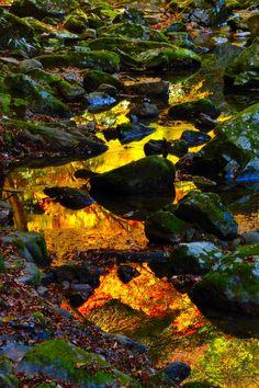 Golden Valley - Akame 48 Falls, Nabari, Mie, Japan
