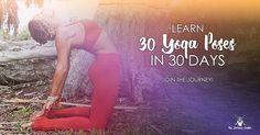 30 pose journey