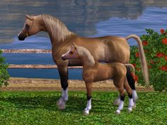 sims 3 blue roan  | ENDED: 10/27] OBF&Horseland Ranch KWPN,Welshs, APH, AAH