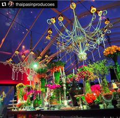 Repost @thaipasinproducoes ・・・ Mesa de doces maravilhosa sob a luz das estrelas!!! ✨✨✨  Caroline Brasil #casamentoaninhaedede #thaipasinproducoes @ilovechocolovers  #docesfinos #atteliededoces #carolinadarosci #sobremesa #docinhos #casamento #eventos #artesanal #feitoamao #docesgourmet #florianopolis #sweettooth #noivas #noivado http://loja.atteliededocesfinos.com.br/