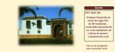AND349 Sevilla.  Hacienda en Venta