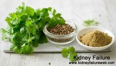 Is Coriander Good for Kidney Failure Patients    http://www.kidneyfailureweb.com/kidney-failure-diet/319.html
