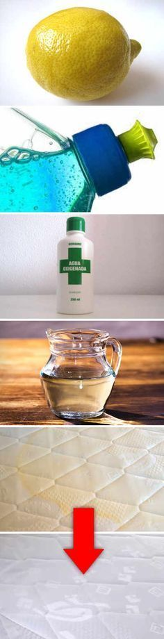 cleaning up vomit Limpieza Natural, Cleaners Homemade, Natural Cleaning Products, Home Hacks, Clean House, Cleaning Hacks, Deep Cleaning, Helpful Hints, Tips
