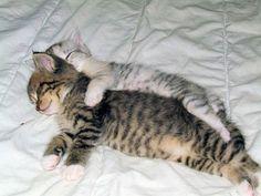 Spooning!