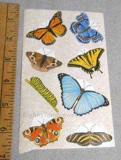 Mrs. Grossman's Butterfly Stickers scrapbook Zeke Smith art craft supply monarch