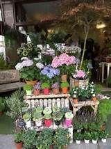 Saint Pères Fleurs, Flower shop