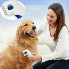 Tips to Choose the Best Flea and Best Tick Prevention for Your Loving Pets Best Pet Products to control Fea & Ticks , Pet Care is important. Flea Removal, Tick Removal, Les Parasites, Killing Fleas, Electric Charge, Flea Treatment, Flea And Tick, Dog Coats, Ticks