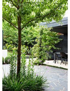 Australian Architecture, Australian Homes, Landscape Design, Garden Design, Modern Courtyard, Evergreen Garden, Melbourne House, Low Maintenance Garden, Backyard
