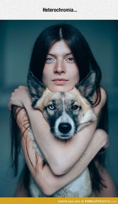 "~ EYES OF GIRL & HER DOG MATCH - INCREDIBLE.  IT'S A CONDITION CALLED ""HETEROCHROMIA"" IN HUMANS ~"