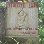 Intuitive Flow Yoga Studio