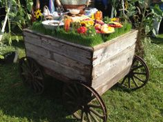 Appetizer and Dessert Display.  Wheat grass People!