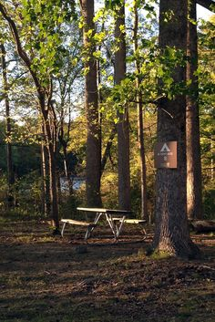 B Tent Site #8 is one of the few camping spots that has a view of Cheatham Lake within #Cheatham Annex #Campgrounds.