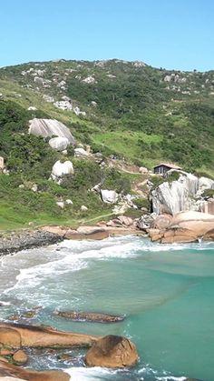 Pensando em fazer uma trilha em Florianópolis, mas não sabe qual fazer e/ou uma com dificuldade leve? Eu te mostro a trilha para a praia do Gravatá, que além de ser fácil, finaliza em uma praia muito boa e deliciosa.