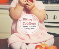 So helpful! Biting in Toddlers, Meeting Your Child's Sensory Needs