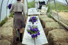 haybale picnic inside a hoop house with flowers on plank table
