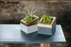 Hey, I found this really awesome Etsy listing at http://www.etsy.com/listing/154767853/concrete-and-gold-angl-planter