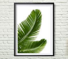 Palmblad | ► Botanisch | Postersinhuis.nl