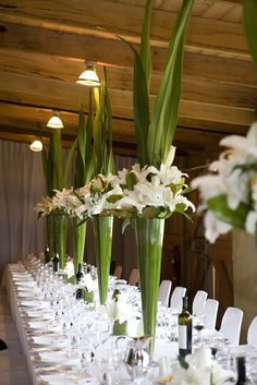 EASY DIY Spectacular Tall Centerpieces of Green Aspidistra Leaves and White Lilies- Leaves Surrounding Inside of Vase with Edges Cut + White Lilies sitting on Edge of Vase (white tulips optional) + Leaves Shooting from Center of Arrangement! Mod Wedding, Wedding Table, Floral Wedding, Wedding Flowers, Wedding Ideas, Wedding Reception, Reception Ideas, Purple Wedding, Trendy Wedding