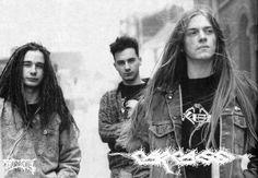 True Metal : Photo