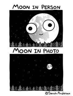 Sarah's Scribbles by Sarah Andersen for September 2019 - GoComics Sarah Andersen, Saras Scribbles, Sarah Anderson Comics, My Little Pony Cartoon, Funny Doodles, Funny Comic Strips, Funny Comedy, Cartoon Memes, Funny Art