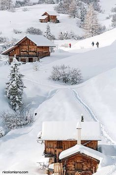 Cabins on the slopes                                                       …