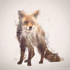 Wild Animals, Smoke And Nature Merged In My Double Exposure Photos