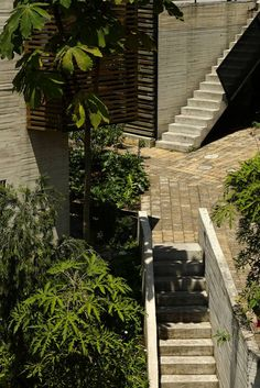 NIQUIA HOUSING IIT College of Architecture