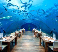 5 #restaurantes temáticos sorprendentes. Restaurante debajo del mar.