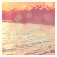 Laguna Beach photograph. at sunset, seaside, palm trees surfers, orange pink, the OC LA summer vacation - fine art print 12x12