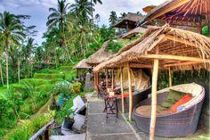 Tegalalang Rice Terrace Ubud, Eat, View, BALI