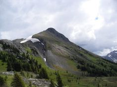 This report represents our third or fourth trip to Burstall Pass. We've gone so many times I can't remember. Even though it is often a busy ...
