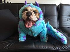 Disfraz Sullivan Monster Inc