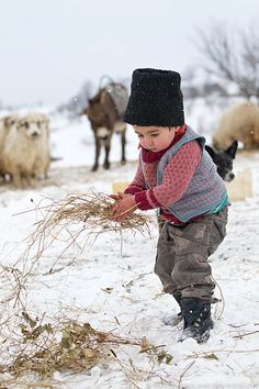 Romanian rural life ~ Photo by Marian Mocanu