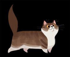 Daily Cat Drawings — 517: Munchkin Cat