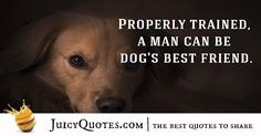 If you pick up a starving dog and make him prosperous he will not bite you This is the principal difference between a dog and man ? Cute Dog Quotes, Best Quotes, Dog Best Friend, Best Friends, Partners In Crime, Dog Gifts, Picture Quotes, Best Dogs, Cute Dogs