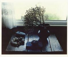 Kyoji Takahashi, Derek Jarman's house