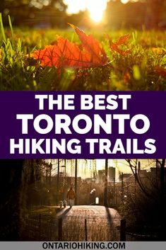 There are so many amazing places to go for a hike or a walk in Toronto. Here are the best places to go hiking in Toronto, Canada.   #Toronto #Canada #Hiking #Trails #Walking #Parks   Hiking in Toronto Canada | Toronto hiking trails | Toronto parks | Toronto nature | Toronto things to do | Toronto travel | Toronto outdoors | Toronto outdoor activities | Hiking Toronto Canada | Hiking near Toronto | Hikes in Toronto | Toronto hikes | Walking trails in Toronto | What to do in Toronto Travel Ideas, Travel Inspiration, Travel Tips, Travel Destinations, Hiking Guide, Go Hiking, Toronto Travel, Canadian Travel, Visit Canada