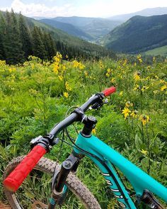 It turns out that riding a Deer Creek to Teocalli Ridge loop is #oneBIGride with some amazing views!  Oh and lots of flies too. And cow poop   #onegoodride #IFeelStrong #yearofthebike #mountainbikingisfun #mountainbiking #mountainbike #mtb #mtnbike #mtbike #bike #bikingisfun #biking #crestedbutte