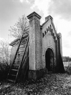 an old family mausoleum that has been turned into a shed for fertilizers.  What happened to the family members that were interred there?