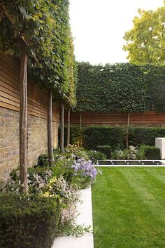 A stilted hedge of Hornbeams and an Oroko fence mounted on top of the existing boundary wall ensure privacy to this garden in Holland Park, UK