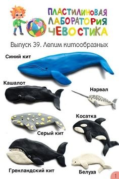 Фотография Projects For Kids, Diy For Kids, Cool Kids, Crafts For Kids, Unicorn Diy, Frog Crafts, Play Clay, Baby Art, Educational Games