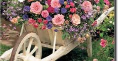 Beautiful idea for your garden// | Plants and gardens | Pinterest | Beautiful and Ideas