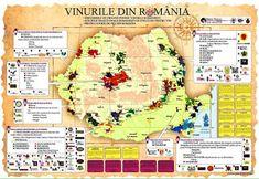 http://urbinavinos.blogspot.cl/