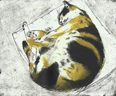 etching 2003 . Coco Sleeping . By Elizabeth Blackadder