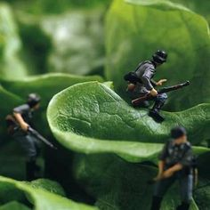 Edible Miniature Worlds - Tiny Food Landscapes (GALLERY)
