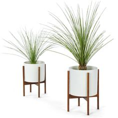 "CS PLANTER 12"" WOOD STAND WHITE Spence & Lyda"