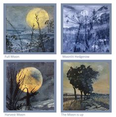 South West Coast Path, Artist Card, Square Card, Harvest Moon, White Envelopes, Moonlight, Printmaking, Original Paintings, Greeting Cards