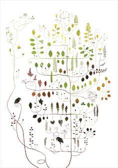 Hornbeam Tree /Aventräd NEW! - Lottas Träd/ Lottas Trees