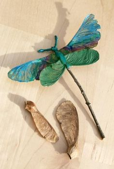 Dragonfly made from maple tree seeds....